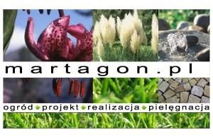 logo martagon
