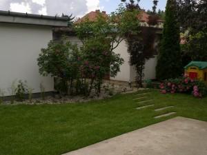 ogród nowoczesny przy tarasie